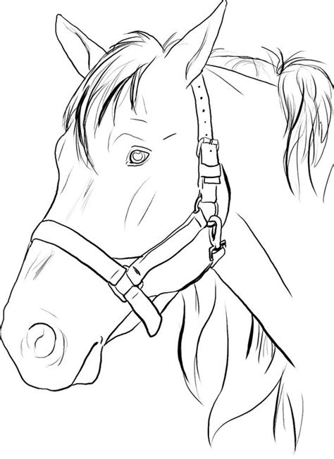 horse face coloring page coloring home