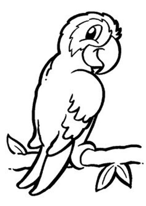 Coloriage Pour Enfant Un Perroquet Sur Une Branche Coloriages D L