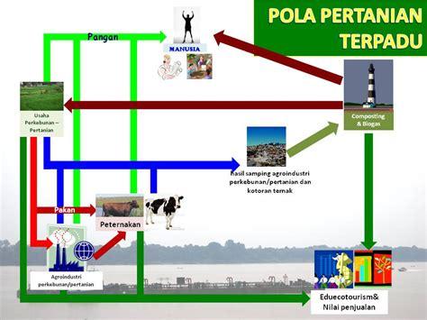 layout pabrik model curan potensi itu masih ada mengulik sapi potong indonesia