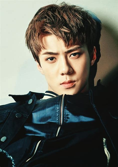 short biography of exo 544 best sehun exo k images on pinterest nativity
