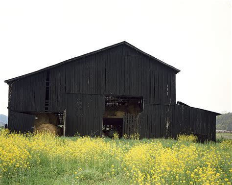 top 28 why are barns painted black in kentucky this barn quilt is on the barn that used to