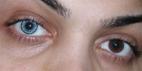 blue colored contacts for brown eye colors baby blue contact lenses by touch