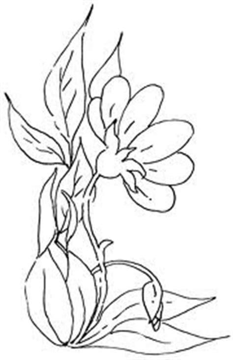 the gallery for gt sketsa bunga matahari