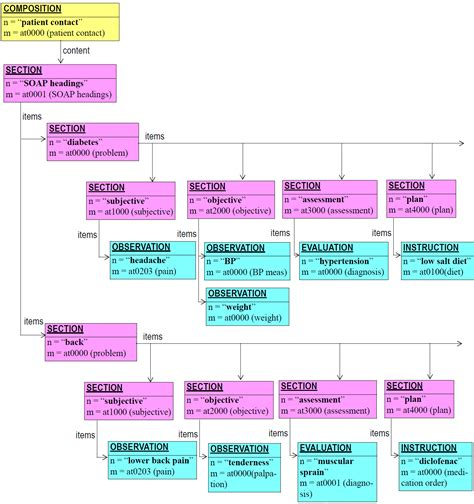 section structure ehr information model
