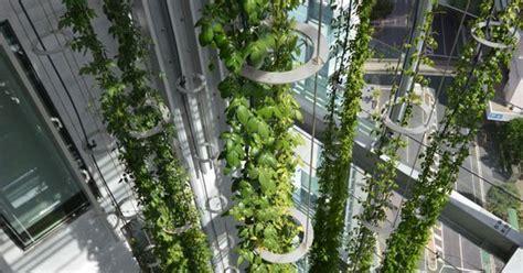 Vertical Garden Brisbane Vertical Indoor Garden Sculptures By Ronstan Tensile