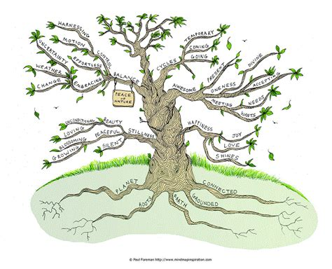 patterns in nature mind map peace of nature mind map
