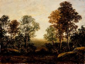 Landscaping exotic landscape trees for central florida landscape trees