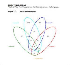Venn Diagram Template Pdf by 36 Venn Diagram Templatees Free Premium Templates
