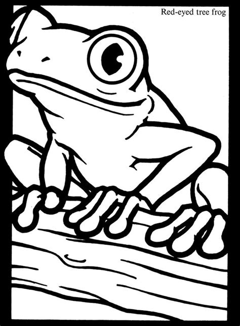 red eyes tree frog coloring page educational