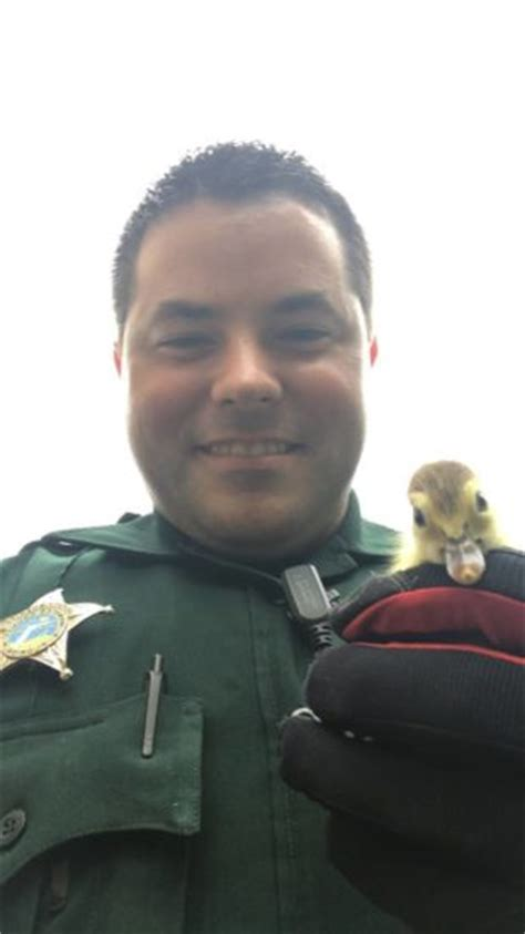 Manatee County Sheriff S Office by Lives Matter Manatee Deputies Rescue Lost Baby