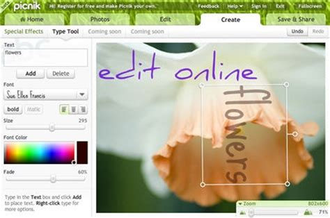 online tattoo text editor add text to photographs online image editor