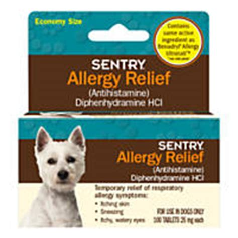 allergy meds for dogs allergy medicine spot treatment itch relief for dogs petco