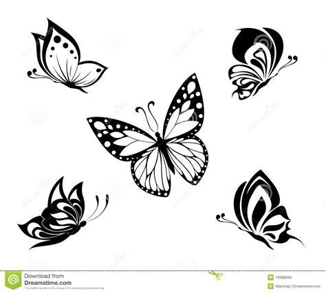 tatuaggi farfalle e fiori insieme farfalle in bianco e nero tatuaggio insieme immagine