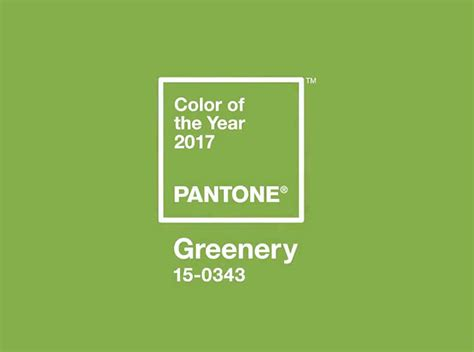 pantone color of the year the pantone color of the year 2017 greenery