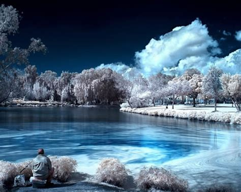 7 Tips On Taking Beautiful Digital Photographs by ミックの紹介ブログ 色を堪能できる 魅惑の自然26の壁紙