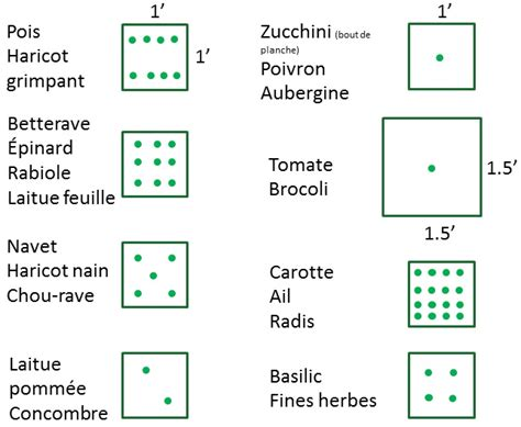Carrã Potager Tomates Potager Biologique On A Tous Un Pouce Vert