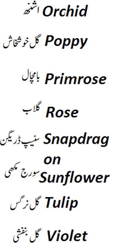 colors name list in urdu and english with pictures names of flowers in english and urdu with pictures