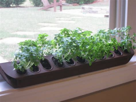 Window Herb Garden Pots Indoor Window Box And Why You Should Not Worry About Using