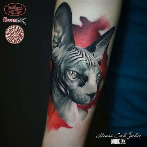 sphynx cat tattoo sphynx cat sphynx cat