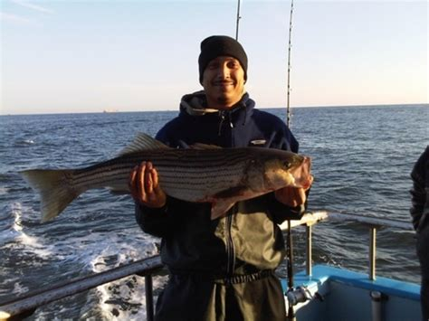 flamingo fishing boat brooklyn 30 0 in striped bass striper caught by noel deleon