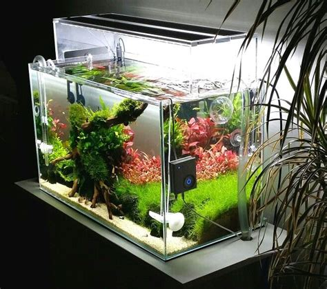 aquascaping ada 13393 best aquascape images on pinterest fish tanks