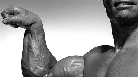 lamar gant bench press lamar gant bench press 28 images fibo strongman classx 2014 deadlift for reps 350