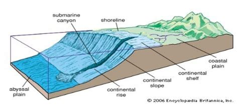 Continental Shelf Slope And Rise by Topography Of The Floor