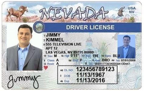 nevada id card template 33 best driver license templates photoshop file images on