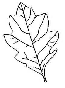autumn leaf outline cliparts co