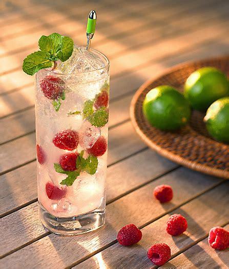 raspberry lemon lime mocktail pretty my refreshing raspberry mojito 224 la carte kitchen