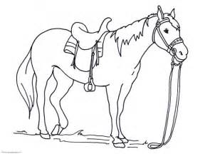 Galerry animal coloring pages for free