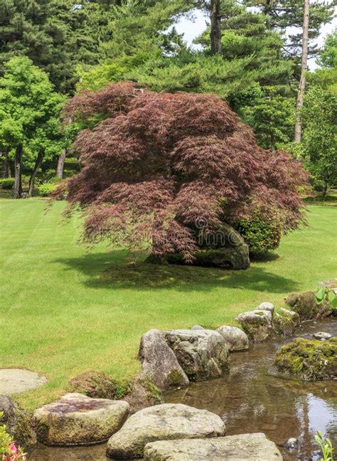 Plan Jardin Japonais by Plan Jardin Japonais Plan Jardin Japonais Amazing