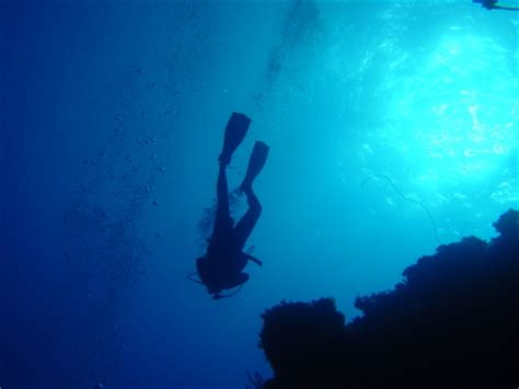 Dive Deeper going how to prepare for deeper bible study