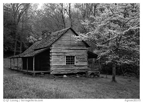 Cabins In Black by Black And White Picture Photo Noah Ogle Log Cabin In The