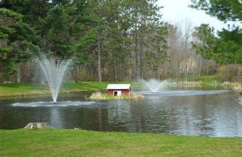 large backyard pond large pond aeration outdoortheme com