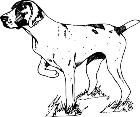 Coloring Pages Of Hunting Dogs | sketches of hunting dogs coloring coloring pages