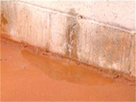 how to stop water from leaking into basement how to prevent basement leaks how tos diy