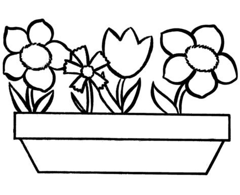 Flowers To Colour Clipart Best Free Flower Coloring Pictures For Kindergarten