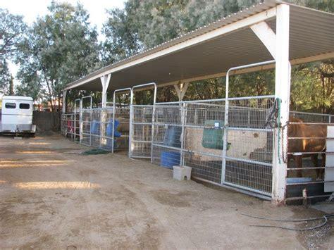 boarding las vegas y ranch boarding and boarding farms in las vegas nevada