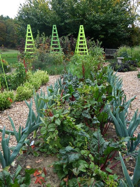 Tower Vegetable Garden Garden Ideas For Vegetables Photograph Tower Hil