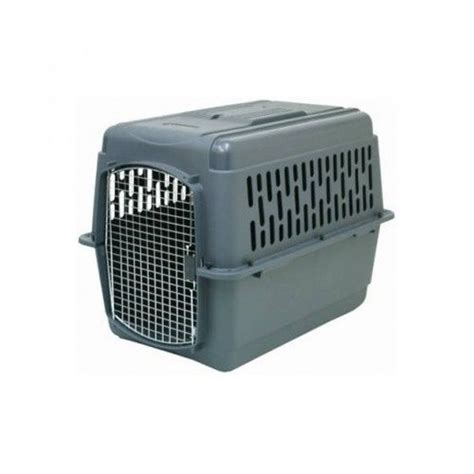 large plastic kennel x large crate kennel airline carrier plastic cage wire door house pet gray ebay