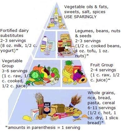 healthy fats for vegan toddlers the simple vegan food pyramid