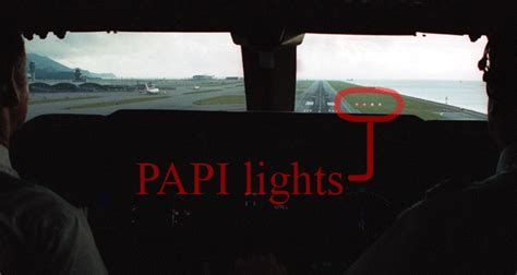 Papi Lights by Soaring Steph June 2013