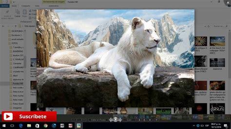 el visor de imagenes de windows 10 no funciona descargar el mejor visor de im 193 genes para windows 10 8 7