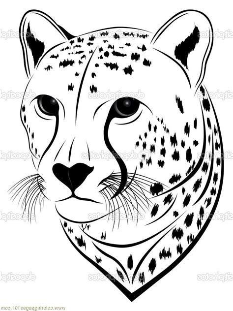 cheetah face coloring page animal face drawing kids colour photos cheetah face