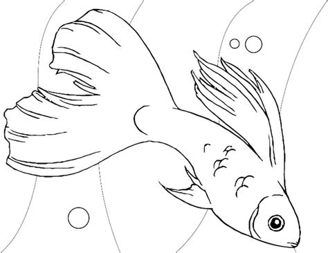 coloring pages little fish very pretty little fish coloring pages animal coloring