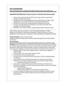 Computer Systems Manager Sle Resume by Computer Software Sales Resume