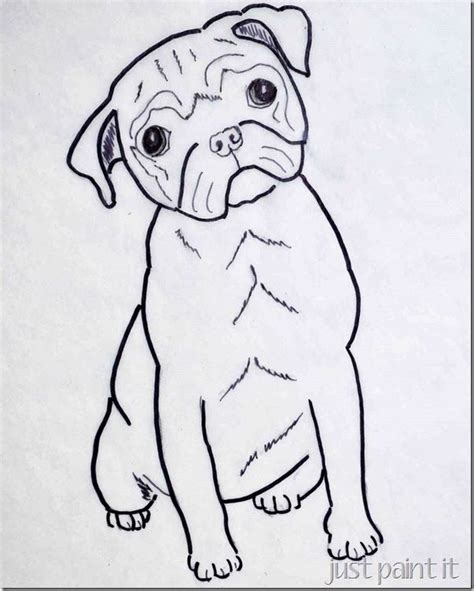 pug template pug pattern pattern design drawing