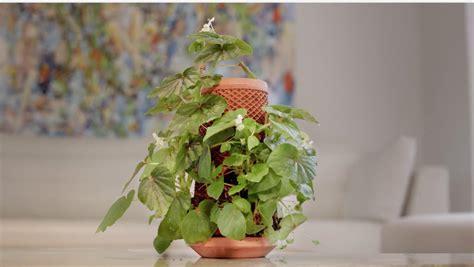 terraplanter hydroponic planter apartment therapy