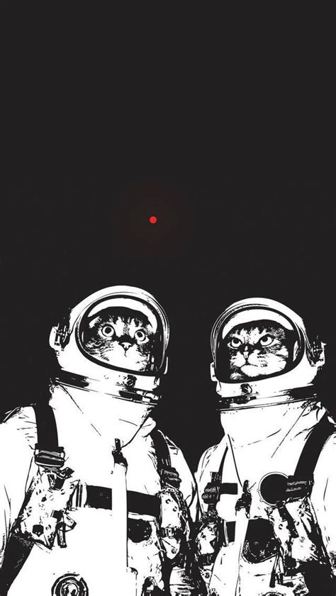 Chasing Iphone X astronaut cats chasing laser iphone 5 wallpaper